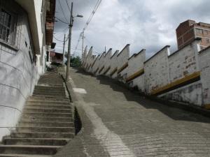 Calle 65